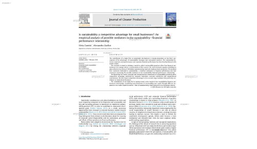 Is sustainability a competitive advantage for small businesses? An empirical analysis of possible mediators in the sustainabilityefinancial performance relationship